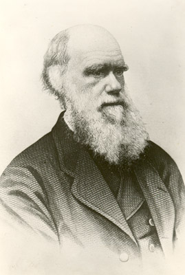 Portrait of Charles Darwin (1809-1882), author of