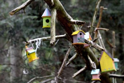 Fairy houses on the Fairy Trail in Lily Dale.