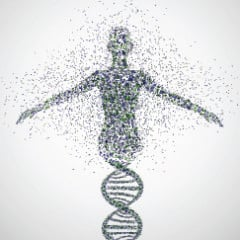 Abstract model of woman made from DNA molecules illustration courtesy Shutterstock.com (http://shutr.bz/10GYQXS)