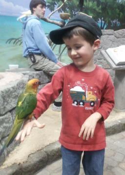 Rachel Marie Stone's son, Aidan, holds a bird, 2012. Photo courtesy Rachel Marie Stone.