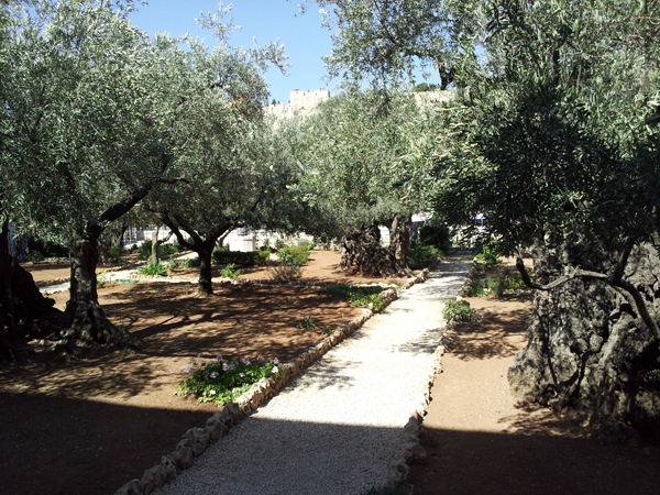 In the Garden of Gethsemane, Jesus experiences the full range of human emotions, and he shares them with his friends in a fully human way. RNS photo by James Martin