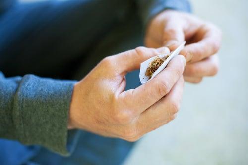 A man rolling a marijuana joint