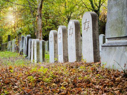 Jewish cemetery image by Muellek Josef via Shutterstock