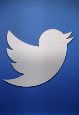 Image of a Twitter bird