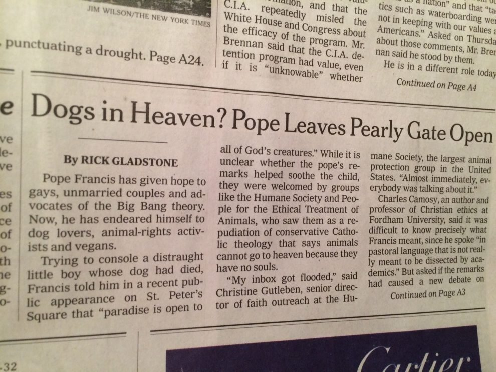 Sorry, Fido  Pope Francis did NOT say our pets are going to heaven