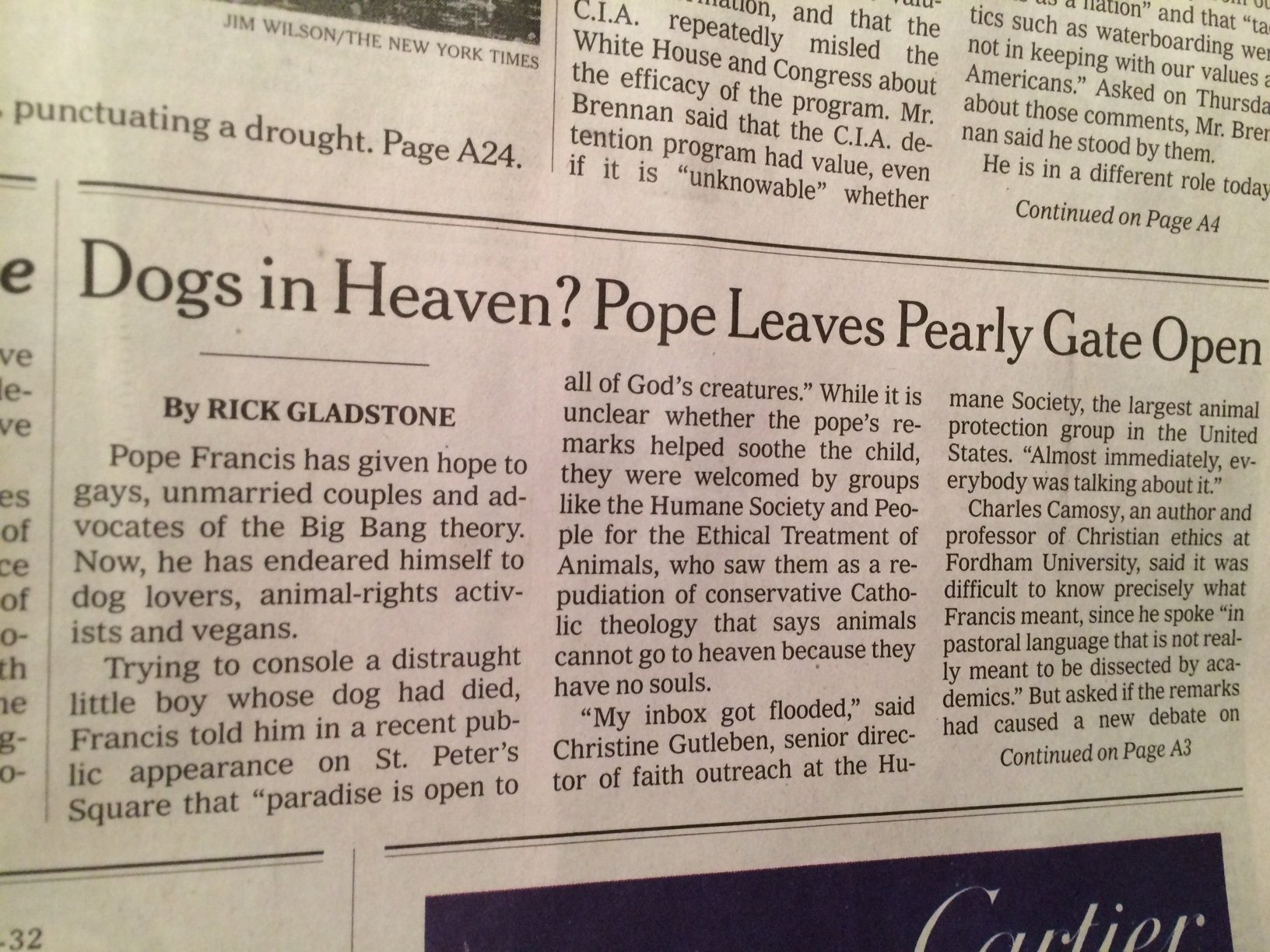 Pope francis did not say our pets are going to heaven