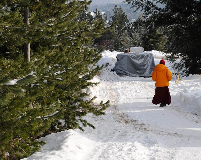 A nun from Sravasti Abbey walks on the property after a 2013 ordination ceremony. Photo by Tracy Simmons