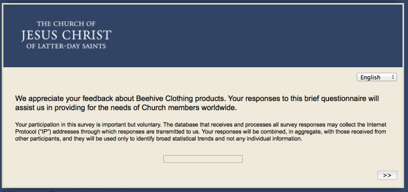 garment survey