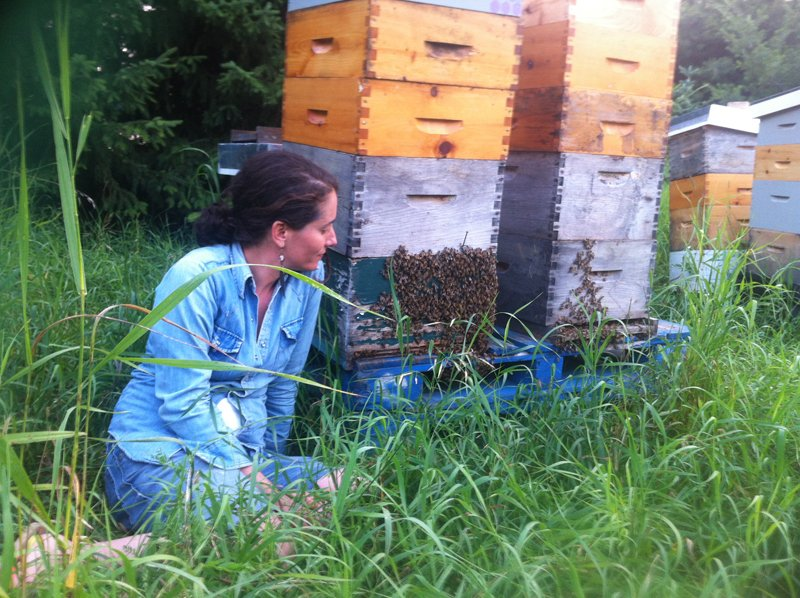 Sabrina Malach observes her bees at Bela Farm. Photo courtesy of Risa Alyson Cooper