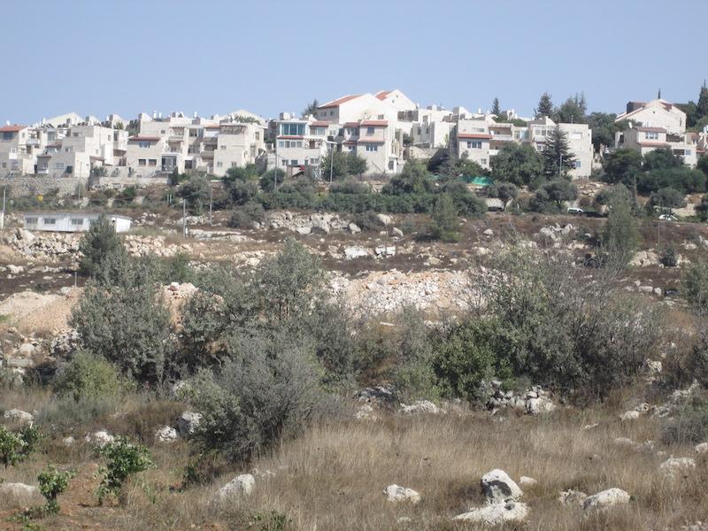 The Jewish settlement of Ephrat. Photo courtesy Michele Chabin