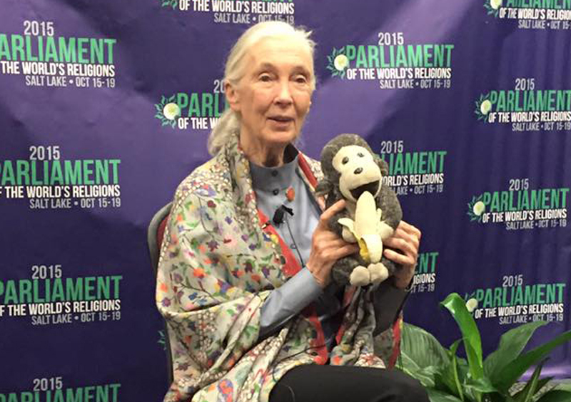 At the Parliament of the World's Religions, which concluded its five-day run in Salt Lake City on Oct. 19, 2015, Jane Goodall spoke about uniting religious and spiritual communities to save the environment, one of the conference's main areas of concern. Religion News Service photo by Anne Marie Hankins