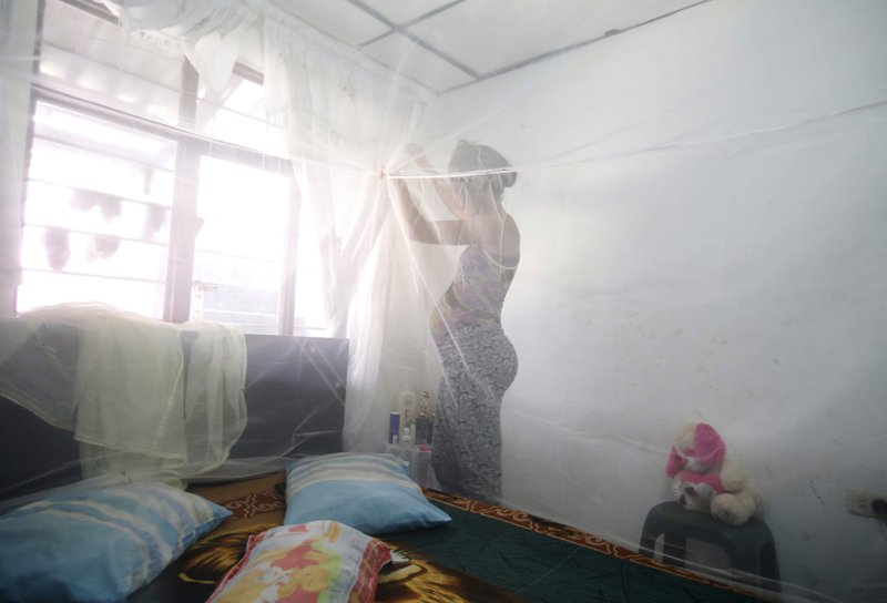 Maribel Gomez, 21, installs a mosquito net over her bed in Cali, Colombia, on February 17, 2016. Municipal health authorities in Cali delivered mosquito nets to pregnant women and installed guppy fish bowls as a preventive measure against the Aedes aegypti mosquito, which is said to transmit the Zika virus. Photo courtesy of REUTERS/Jaime Saldarriaga