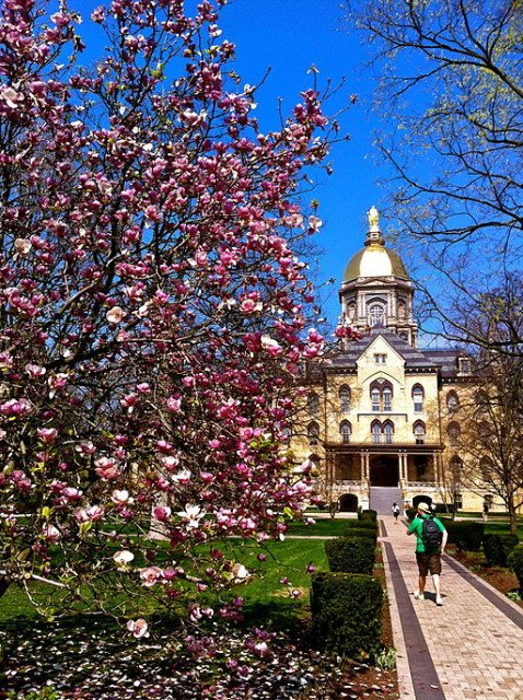 The Golden Dome in spring at the University of Notre Dame.