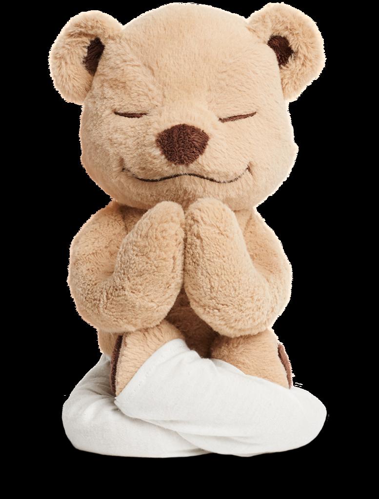 Meddy Teddy.