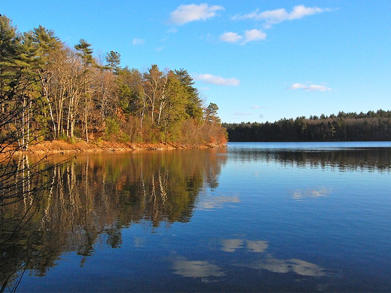 """Walden Pond, near Concord, Mass.,in 2010, which is discussed extensively by Henry David Thoreau in the chapter """"The Ponds."""" Photo courtesy of Creative Commons"""