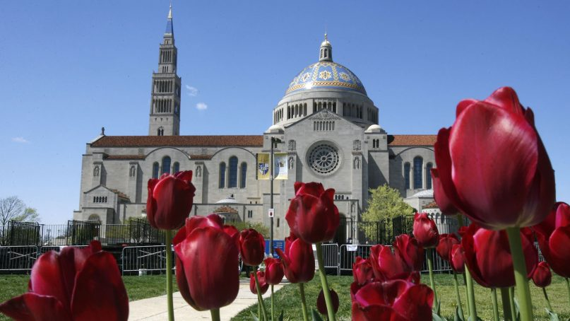 In preparation of Pope Benedict XVI's upcoming visit to Washington, flowers, media risers, and banners decorate the Catholic University of America, tangential to the Basilica of the National Shrine of the Immaculate Conception, in background, in Washington on Monday April 14, 2008. (AP Photo/Jacquelyn Martin)