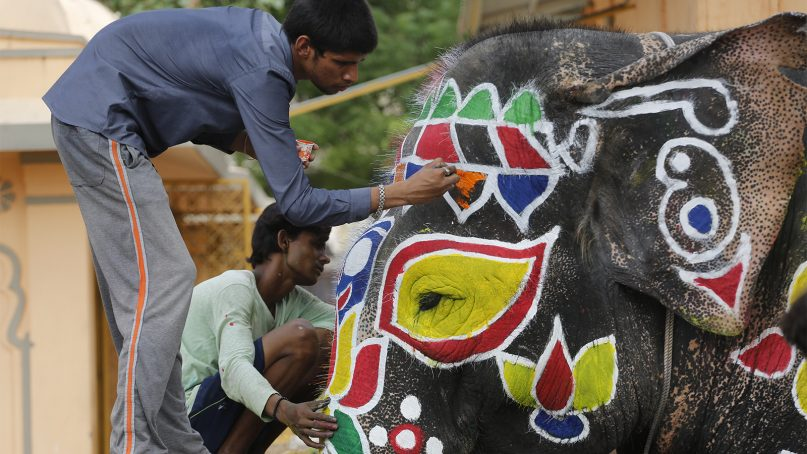Indians paint decorative motifs on an elephant in preparation of the annual Rath Yatra, or Chariot procession, in Ahmadabad, India, on July 13, 2018. The three idols of Hindu God Jagannath, his brother Balabhadra and sister Subhadra are taken out in a grand procession in specially made chariots, called raths, which are pulled by thousands of devotees during the Rath Yatram or the chariot procession festival, which will be celebrated on July 14. (AP Photo/Ajit Solanki)