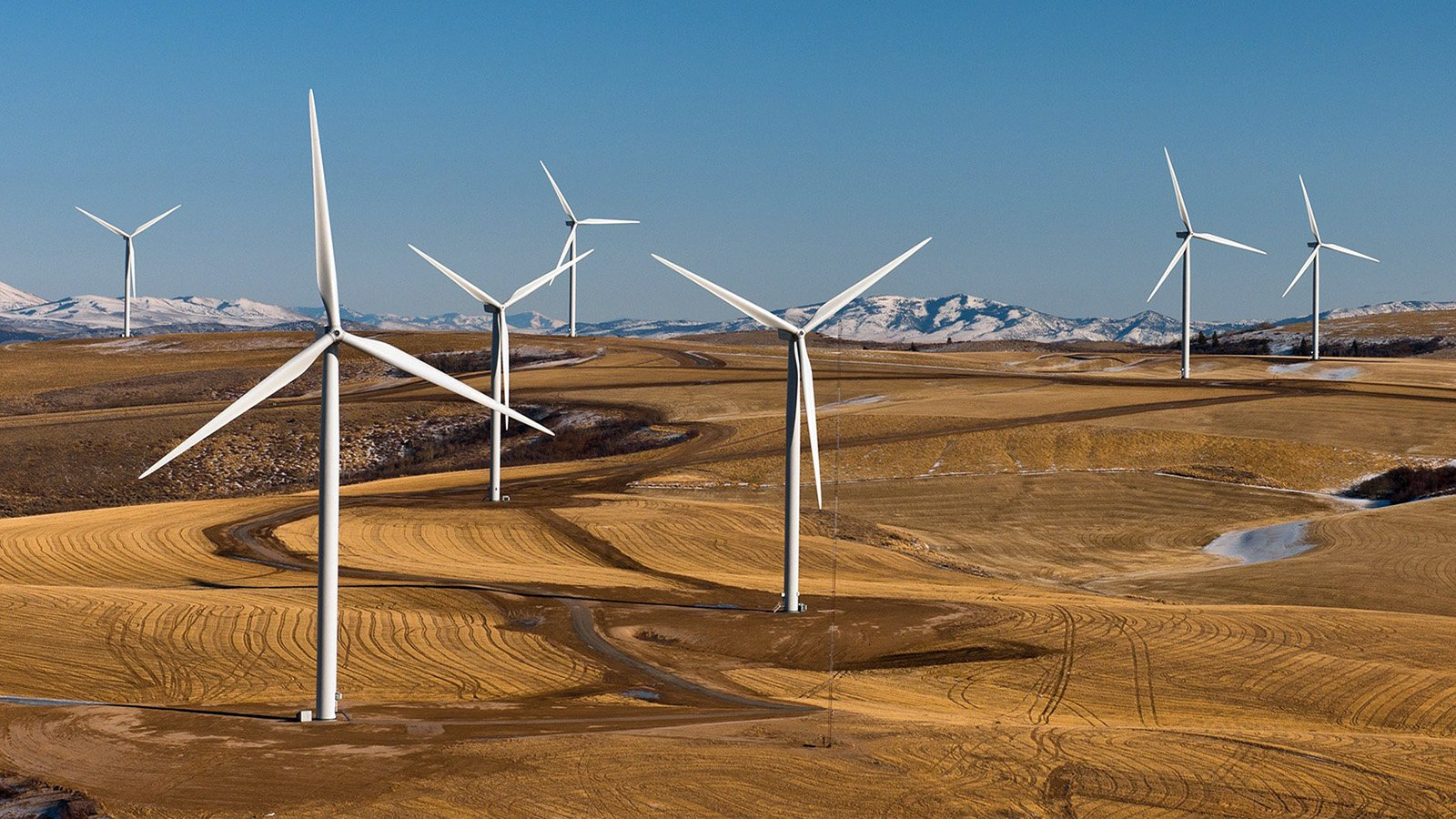 Wind turbines dot the landscape. Photo courtesy of Creative Commons