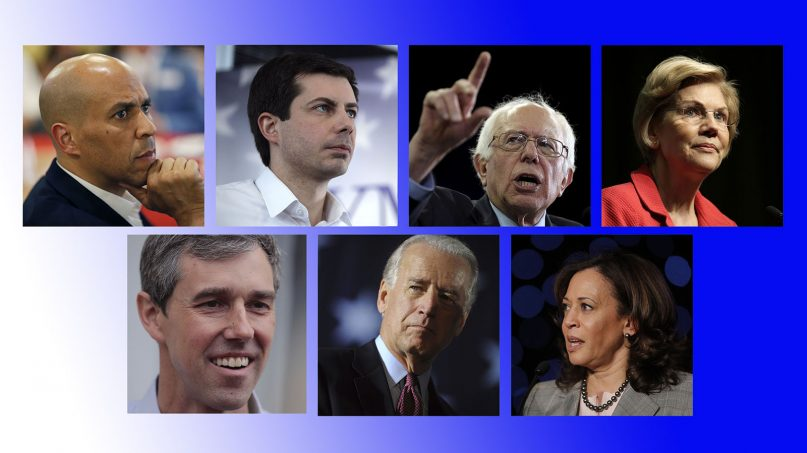 Several of the many 2020 Democratic presidential candidates. (AP photos)