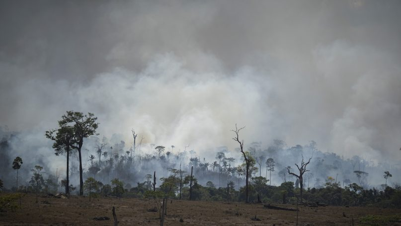 Fire consumes an area in Altamira, Brazil, Tuesday, Aug. 27, 2019. Brazil insisted on Tuesday that it would set conditions for accepting any aid from the world's richest nations to help fight Amazon fires, saying France couldn't protect the Notre Dame Cathedral from fire devastation and should focus on its own problems. (AP Photo/Leo Correa)