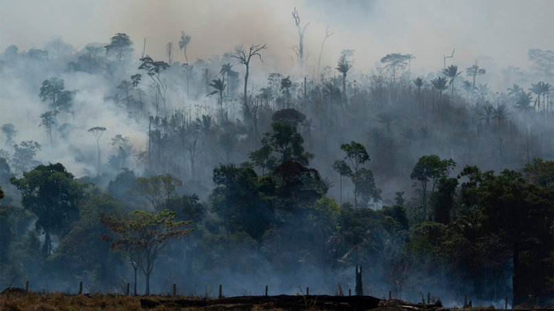 Fire consumes the Amazon rainforest in Altamira, Brazil, on Aug. 27, 2019. Fires across the Brazilian Amazon have sparked an international outcry for preservation of the world's largest rainforest. (AP Photo/Leo Correa)