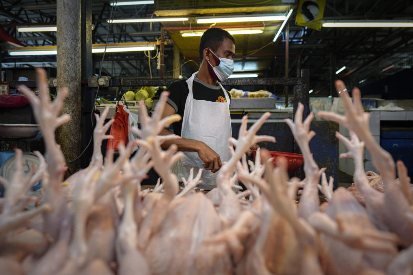 A poultry vendor, wearing a face mask to help curb the spread of the coronavirus, prepares birds at a wet market in downtown Kuala Lumpur, Malaysia, on April 24, 2020. (AP Photo/Vincent Thian)
