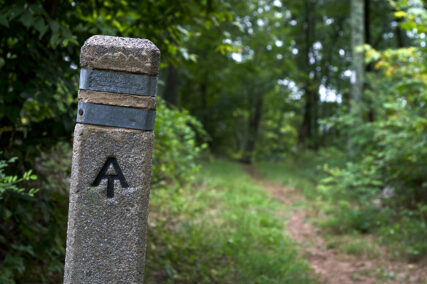 A trail maker along the Appalachian Trail. Photo by Chiot's Run/Creative Commons