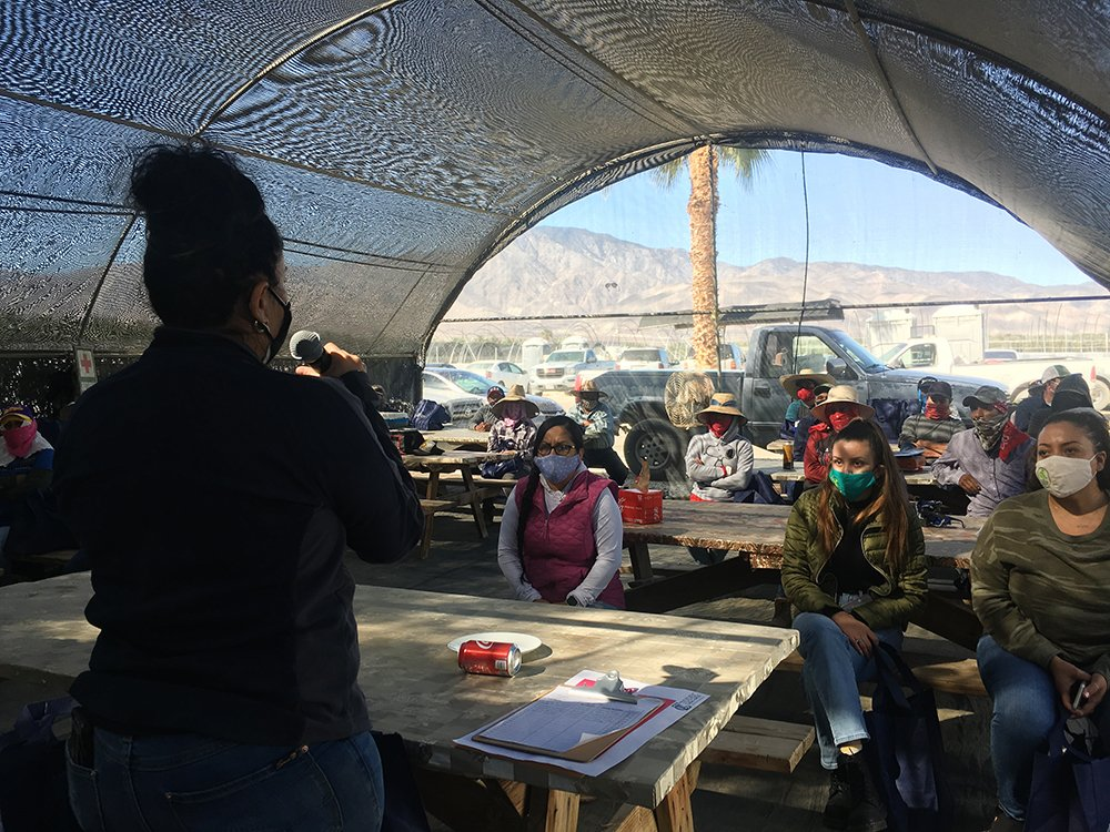 Luz Gallegos, left, executive director of TODEC Legal Center, holds a vaccine information workshop for agricultural workers, Thursday, March 18, 2021, in Thermal, California. RNS photo by Alejandra Molina