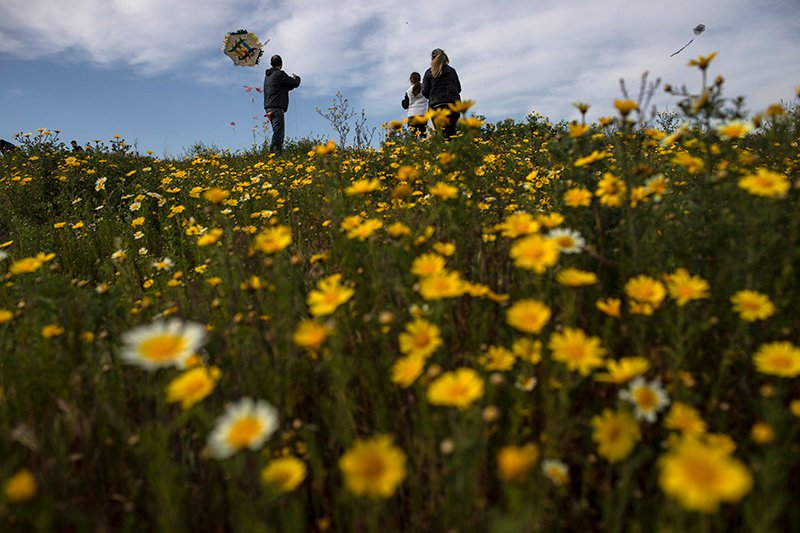 A family flies a kite in a field of flowers in Drapetsona, a suburb of Piraeus, near Athens, on Sunday, March 14, 2021. The coronavirus pandemic, which hit Cyprus and Greece especially hard this winter, threatened to ground an annual kite-flying tradition, an essential part of the celebration of Clean Monday, the first day of Orthodox Lent. (AP Photo/Petros Giannakouris)