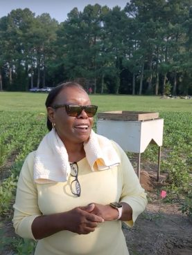 Angela Wilson discusses her interest in and connection to an archeological dig at a former plantation in St. Inigoes, in southern Maryland. Video screengrab