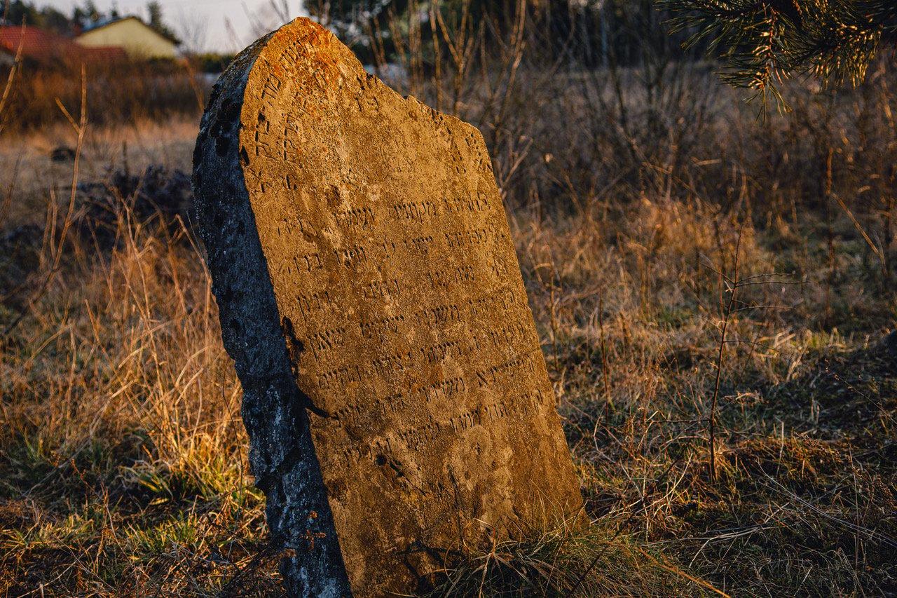 Sobków Jewish Cemetery in Poland. Photo courtesy of the European Jewish Cemeteries Initiative
