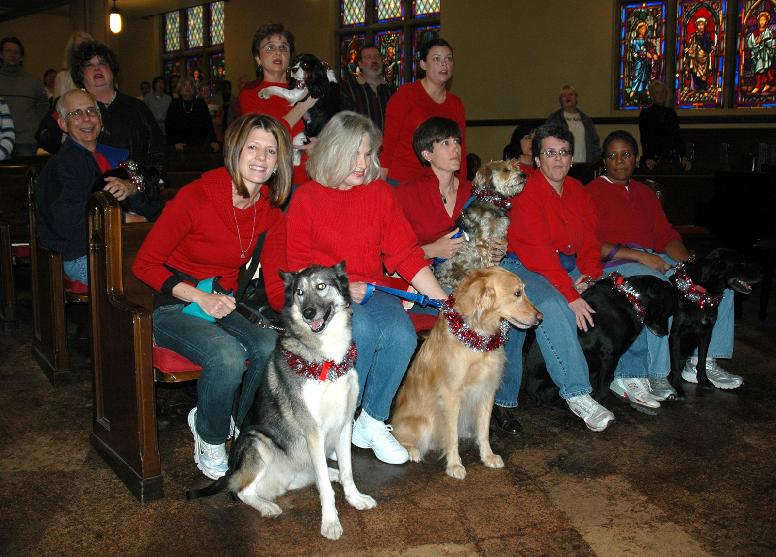 Newly trained therapy dogs are blessed during a service at Quapaw Quarter UMC in Little Rock, Arkansas, in 2007. Photo by Celia Bernheimer